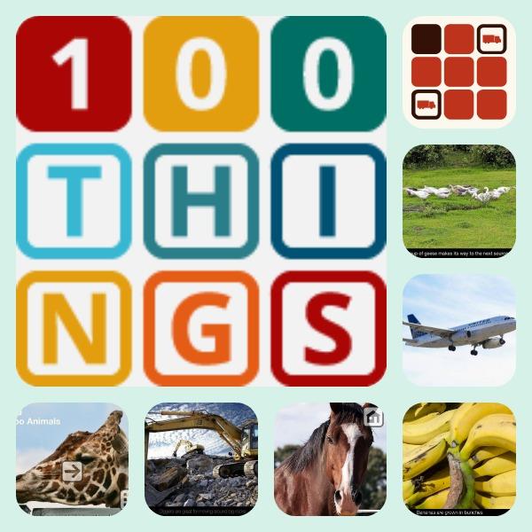 100things_juego educativo_100imágenes